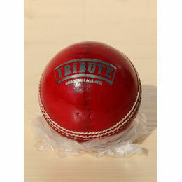 Tribute Branded Quality Leather Cricket Ball