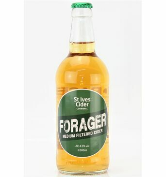Forager Medium Filtered Cider - St Ives Cider (ABV 4.5%)